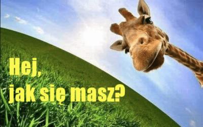 Як польською розповісти про своє самопочуття: фрази